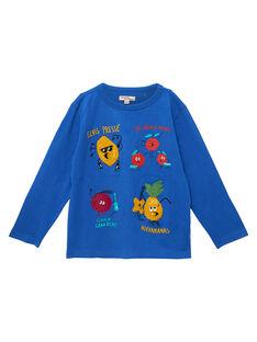 """Tee shirt garçon manches longues """"fruits"""" bleu JOVITEE1 / 20S902D1TML703"""