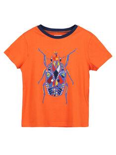Tee-shirt manches courtes garçon FOYETI3 / 19S902M4TMCF519