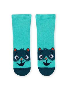 Chaussettes bleu turquoise à motif raton-laveur bébé garçon MYUJOCHOB4 / 21WI1013SOQ209