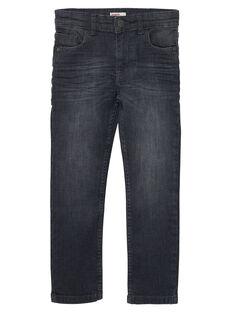 Jeans Denim gris JOESJEREG2 / 20S90268D29K004