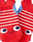 Chaussettes Bleue JYUCEACHO2 / 20SI10N2SOQ201