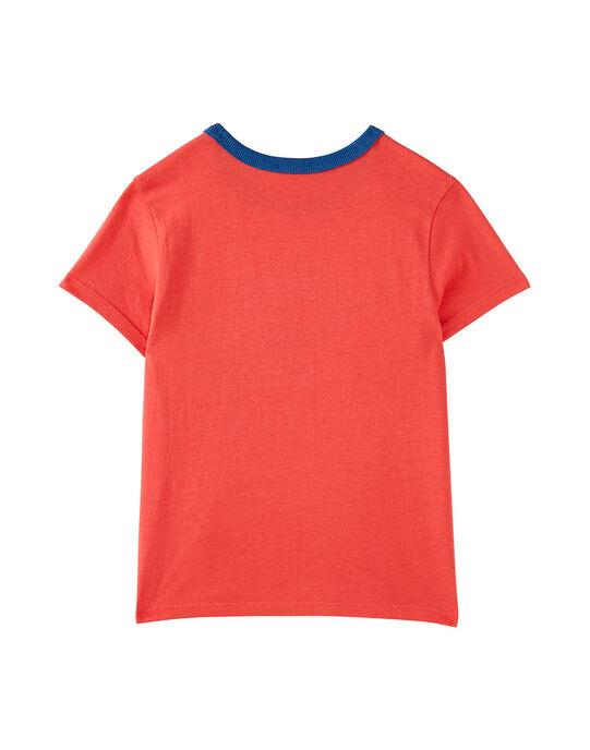 Tee shirt garçon manches courtes rouille caméléon JOSAUTI1 / 20S902Q1TMC408