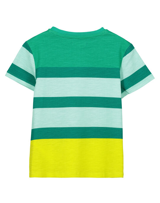 Tee-shirt rayé manches courtes garçon FOCATI6 / 19S902D5TMC000