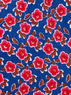 Short en velours imprimé fleurie KARESHORT / 20W901G1SHOC212
