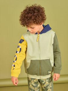 Sweatshirt à capuche colorblock enfant garçon MOKAGIL / 21W902I1GIL612